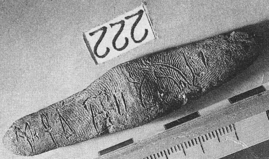 PY palmprints copy
