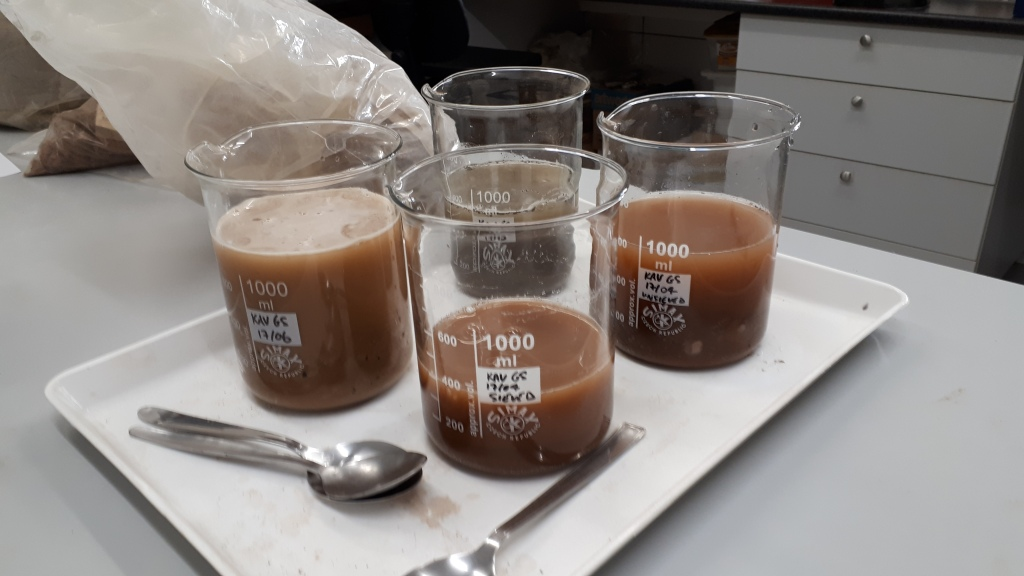 Four beakers sitting on a tray, containing varying amounts of brown liquid