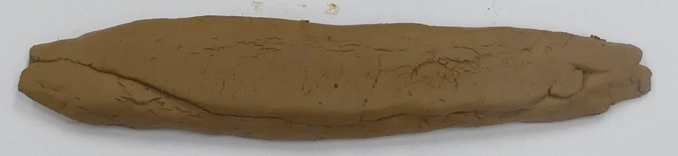 Back of long thin clay tablet with slightly tapering edges, showing irregular line where folded clay has been joined